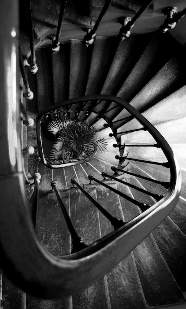 Like life itself, this stairway spirals ever down toward an insouciant bed of thorns. Yay for existence.